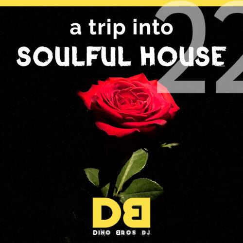 A trip into Soulful House (Trip Twentytwo)