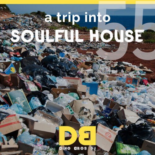 A trip into Soulful House (Trip FiftyFive) - House Music will save us